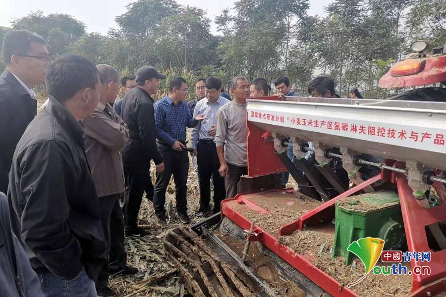 """""""小麦玉米主产区氮磷淋失阻控技术与产品研发""""项目观摩会召开"""