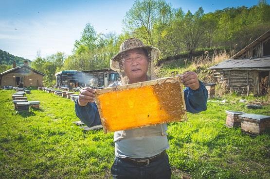 京东助力贫困地区产业升级、农民增收