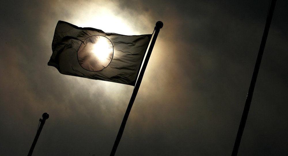 日媒:新天皇本月举行登基大典 将大赦日本