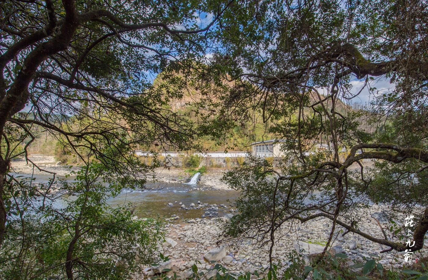 一条野味十足的黑水河 河里有你从未见过的黑水鱼
