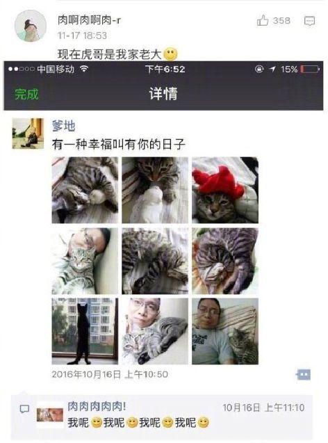 偷能量养宠物竟能治好百万网友的懒癌? 热门段子 热图21