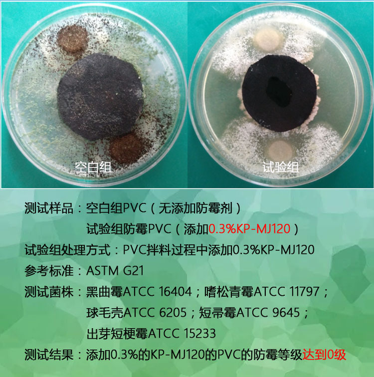 食用级聚乙烯防霉片的防霉原理_交联聚乙烯隔离片