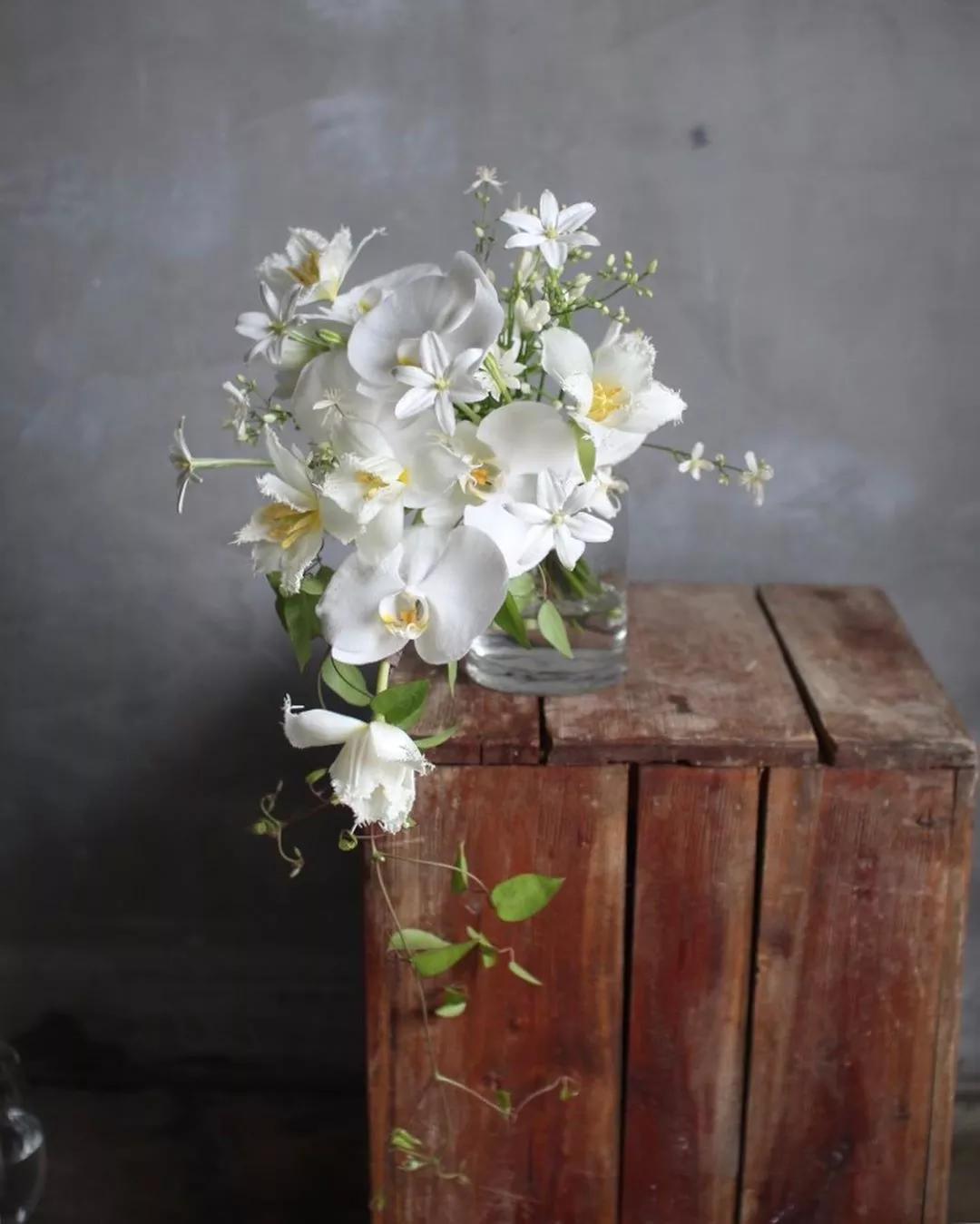 注意事项   远离催热剂—乙烯,远离蔬菜和水果,因为它们会释放大量乙烯,导致鲜花衰败.