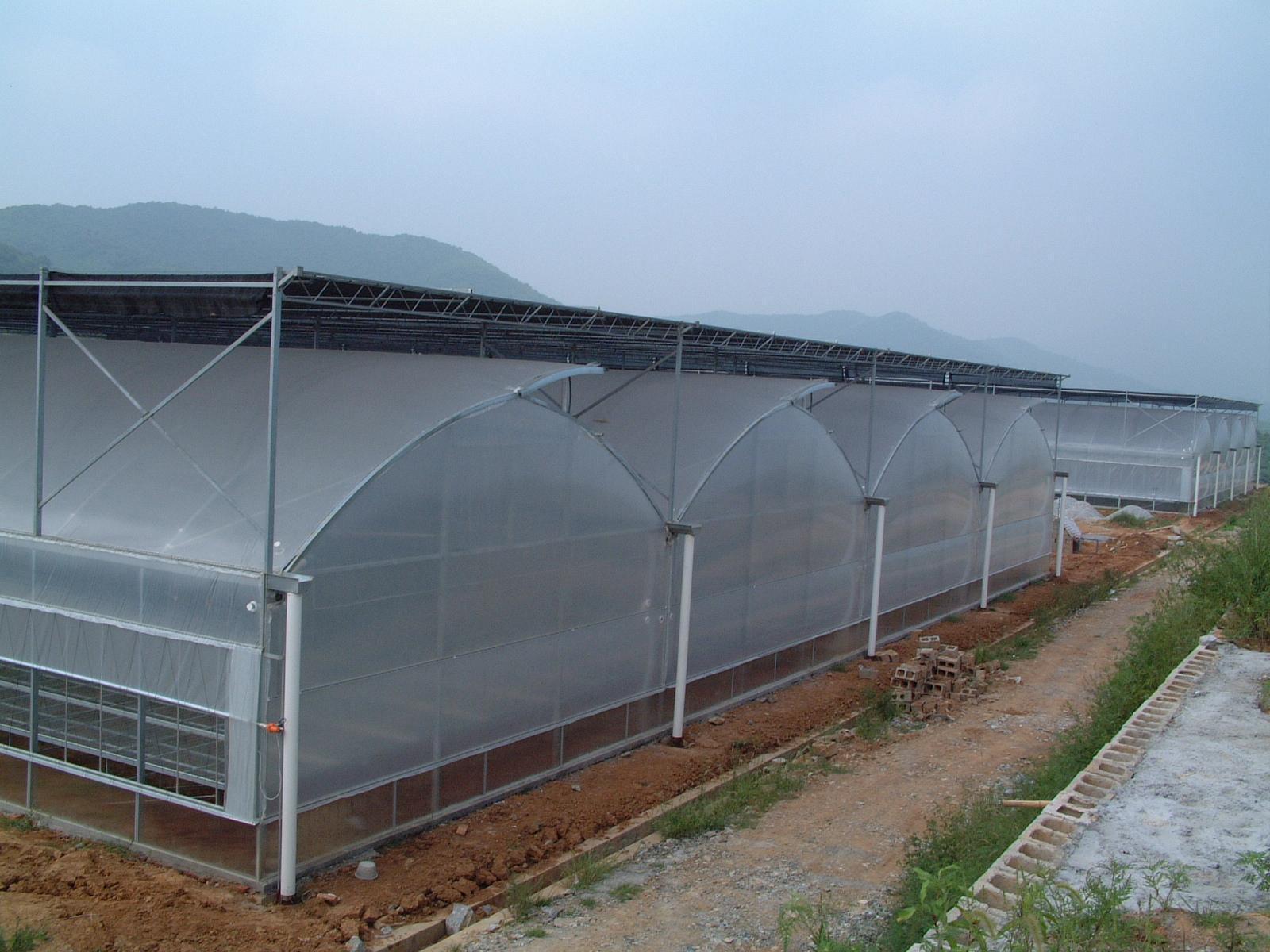 异形薄膜温室大棚简介,组合式大棚设计参考