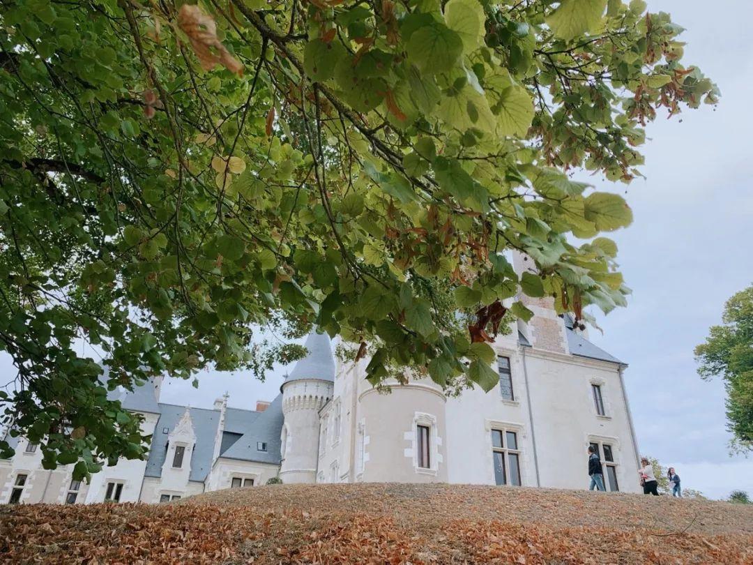 在卢瓦尔河谷城堡里的故事