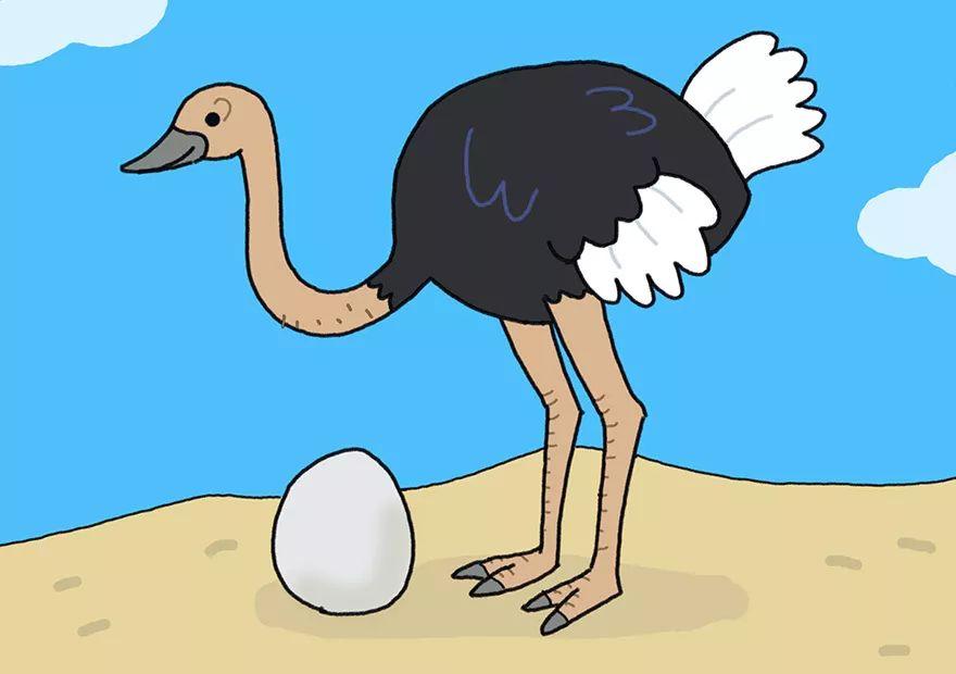动物简笔画送欢乐 教你画酷酷的鹰和萌萌的鸵鸟