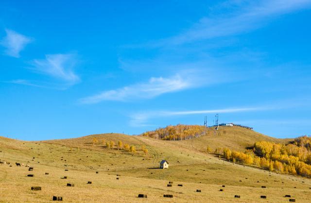 距离北京300公里,有一处比呼伦贝尔还美的草原,曾是皇家猎场