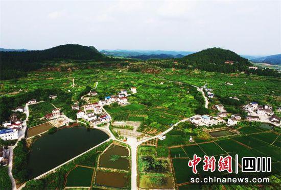 """西充:建设""""四好农村路"""" 助推乡村大振兴_交通运输局"""