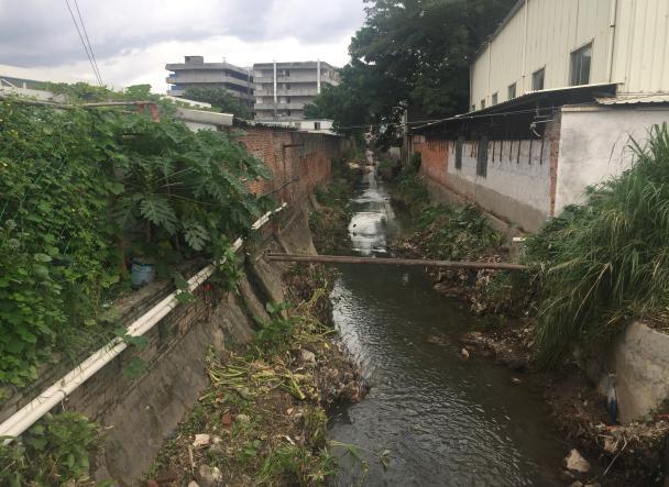 """一年多努力整治,广州黄埔这条""""酱油河""""变身居民休闲好去处"""