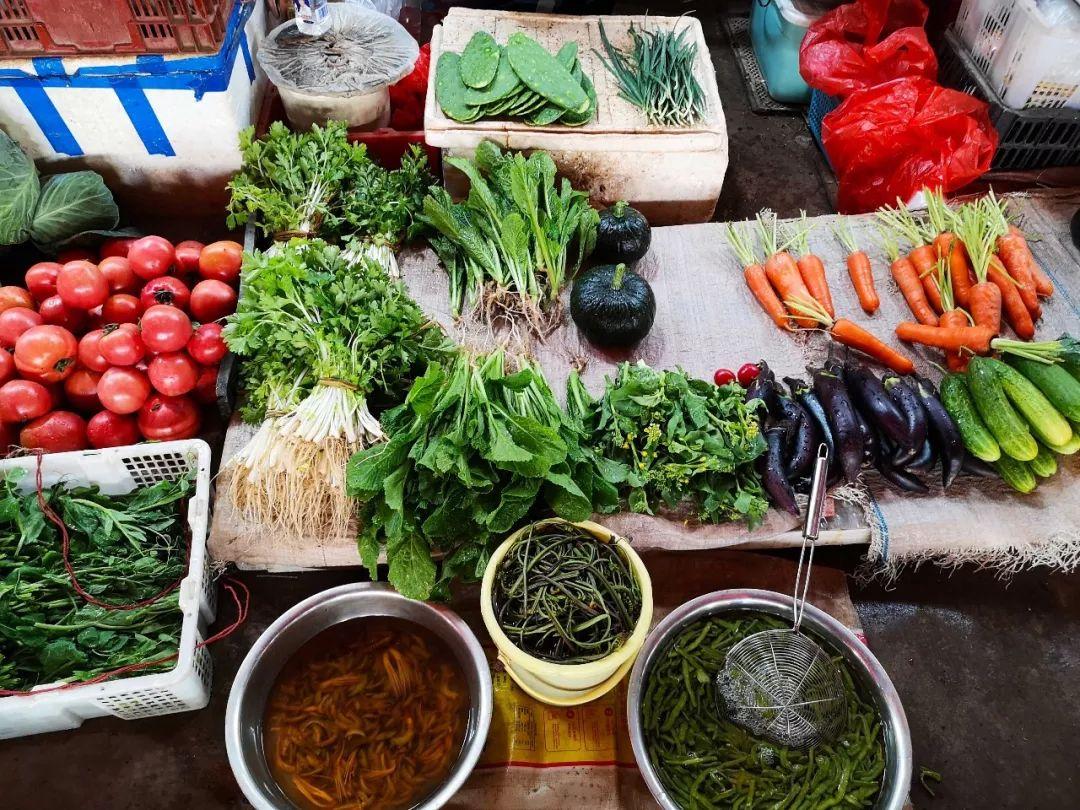 时尚健康美食-营养膳食菜谱-娱乐资讯