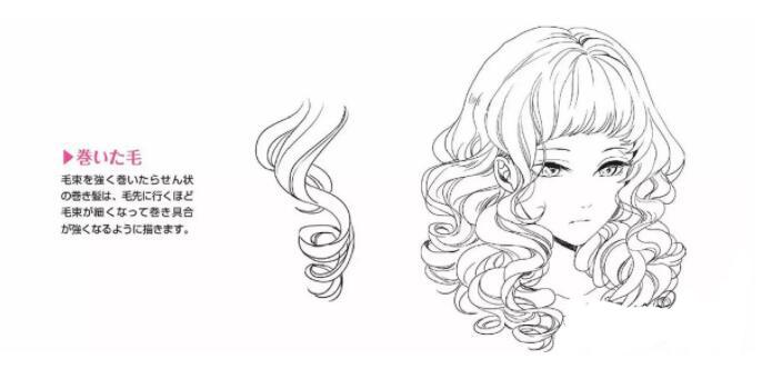 如何画好动漫人物头发?超详细的人物头发绘制教程! 教学教程-第12张