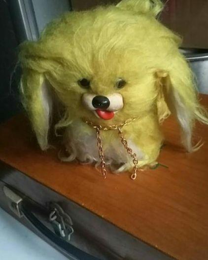 网赌被黑不能出款怎么办_狗狗也有自己喜欢的玩具,然而当狗狗长大后,玩具却变身为另一个样?