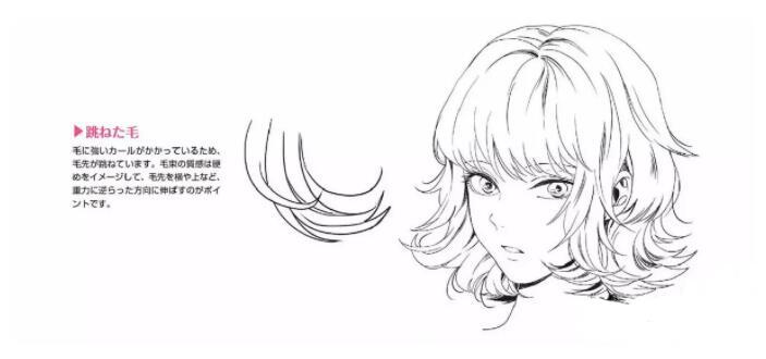 如何画好动漫人物头发?超详细的人物头发绘制教程! 教学教程-第10张