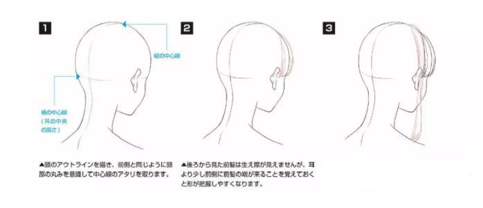 如何画好动漫人物头发?超详细的人物头发绘制教程! 教学教程-第3张