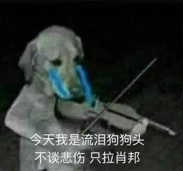 """被動人:自稱""""佛系""""的年輕人 網絡流行語 熱圖19"""