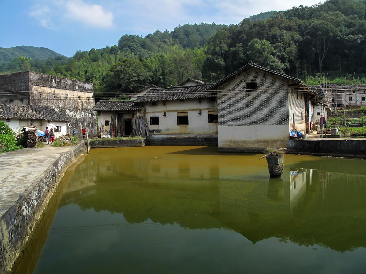 桂平人口_广西客家人口最多的县,博白、陆川、桂平上榜