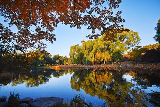 """市属公园又推20处吸引大家打卡的""""多彩秋色""""观赏点"""