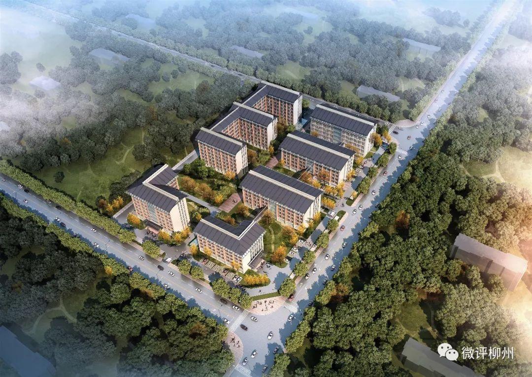 柳州市柳江区健康养老综合服务中心项目日景鸟瞰图.