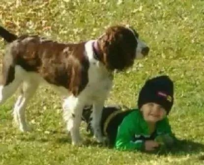 网赌提款不了解决的最好方_两岁小男孩走失,直升机搜索时,竟发现了两个亮点...