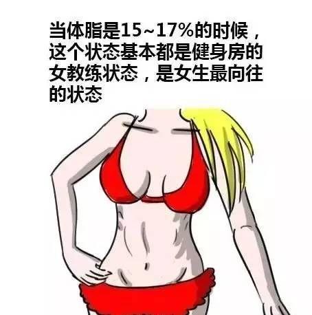 女生体脂15~17%