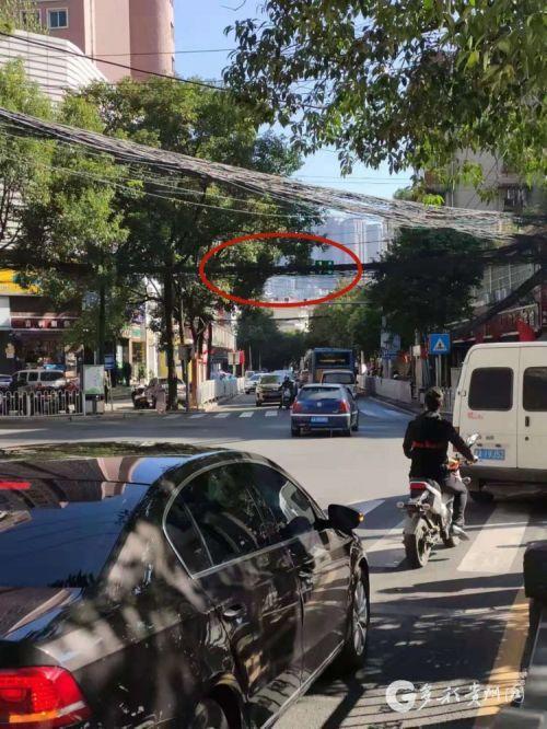 这咋看?贵阳这个十字路口交通信号灯被电线树枝遮挡