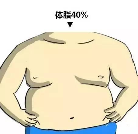 体脂40%