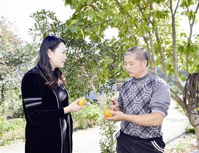 大学毕业回乡创业 电商带领村民致富