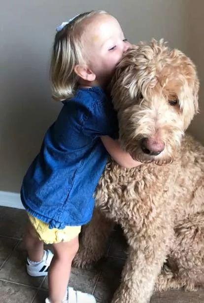 3岁的小女子和狗砸...这肯定最甜美版的《美人与野兽》!