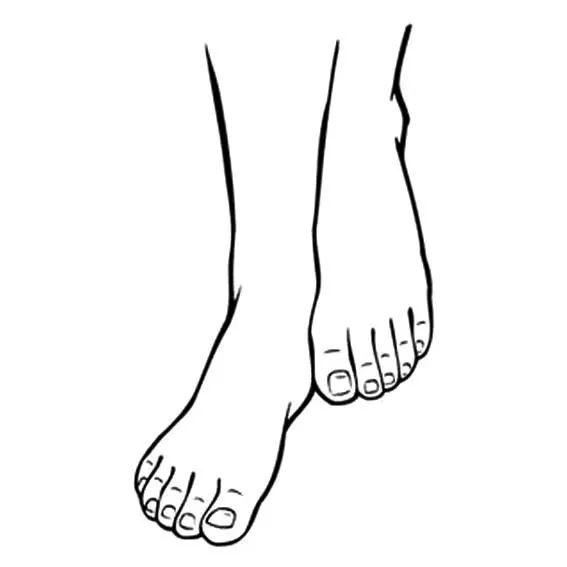 动漫人物脚的画法,人物简笔画大全,如何画脚的简笔画图片,关于人体脚的简笔画画法,幼儿简笔画大全,教你学画脚的简单画法.