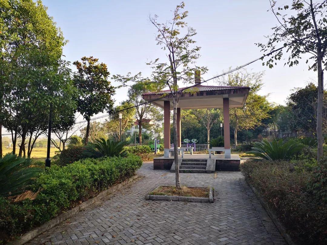 芮城县阳城镇西尧村