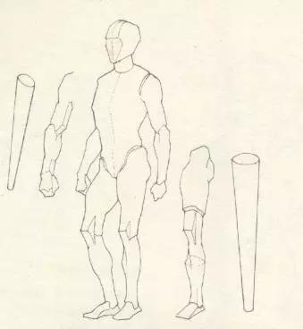 形体包括下肢与四肢.都是连结在躯干四端近粗远细的圆椎案例块.教育教学上肢图片