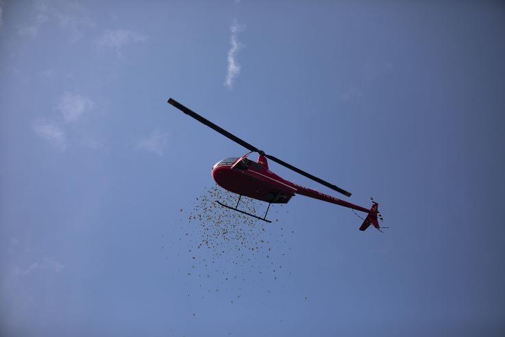 土豪的婚禮就是不一樣!新郎「包下直升機灑紅包雨」在場賓客全瘋搶!網笑翻:也太狂!