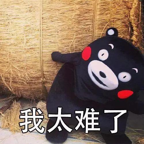 """外军在中国部队学叠豆腐块:""""我太难了!"""""""