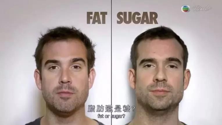 为了找出肥胖真凶,双胞胎一人吃糖、一人吃脂肪,4周后发现...