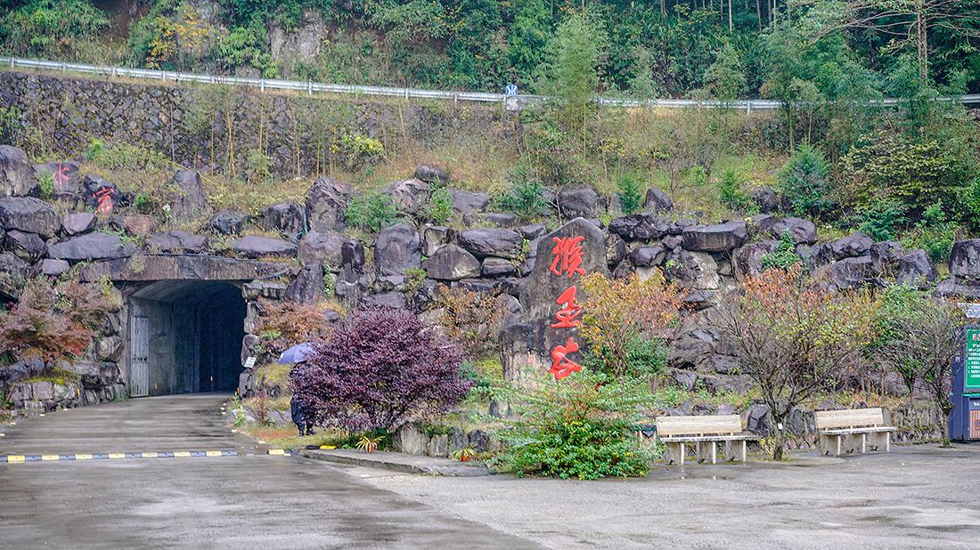 亲测,浙江拍猴子最佳摄影地,温州文成县铜铃山