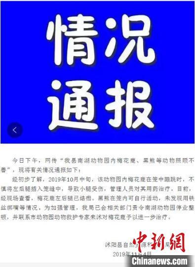"""非洲小伙蓝翔学艺江苏一动物园被指""""虐待动物"""