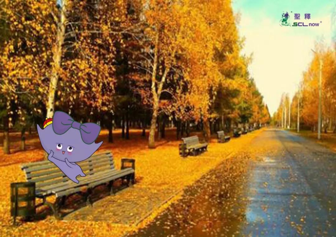 描写秋天景色优美句子