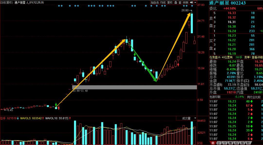股票第二波的原理是什么_什么是第二磨牙图片