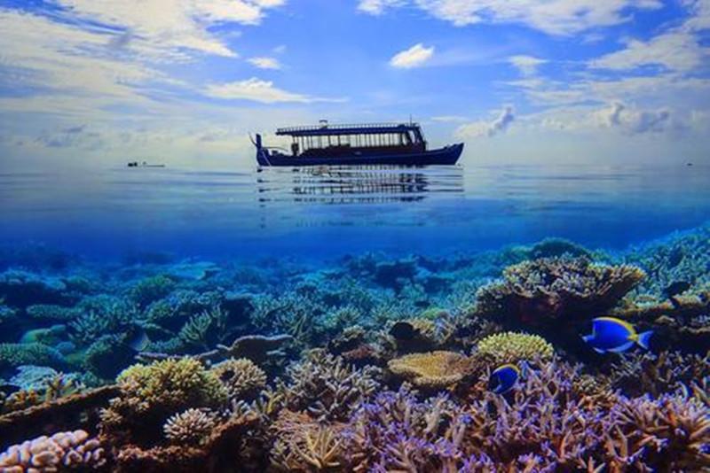 马尔代夫人均消费_马尔代夫图片风景图片