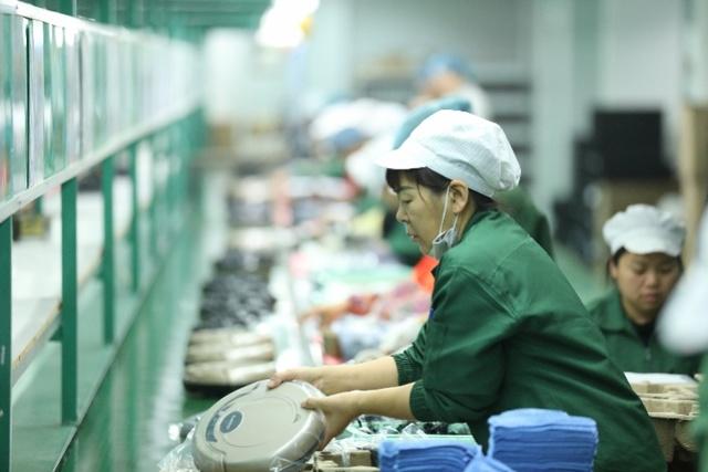 深圳家电代工厂新品牌低价逆袭,反向定制成双11新关键词