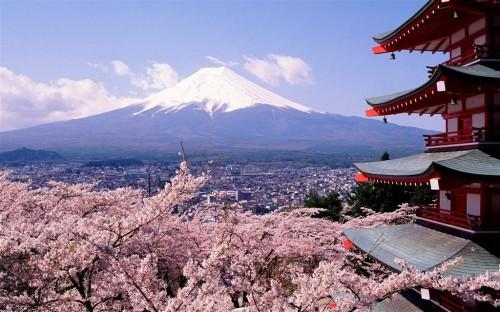 日本留学费用有多少?真实数据告诉你!