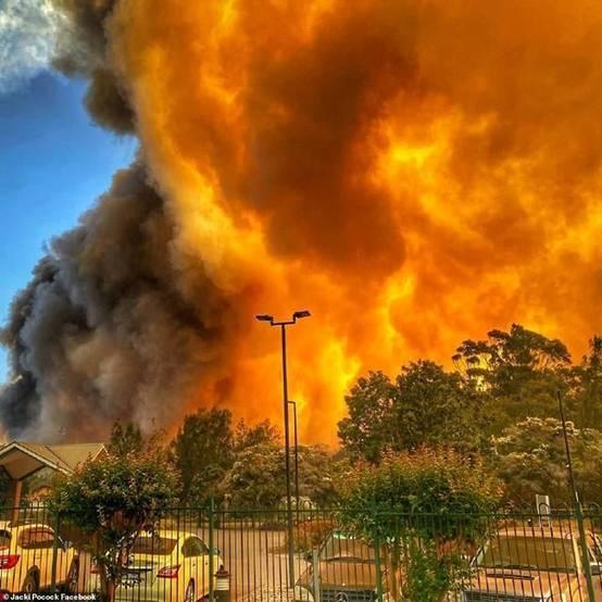 澳大利亚发生森林大火:多处房屋被毁 居民被迫逃命_新南威尔士州