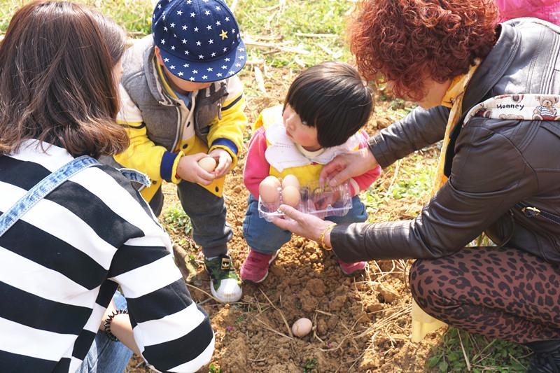 武汉周边果蔬采摘,武汉自驾一日游,吃喝玩乐全都有
