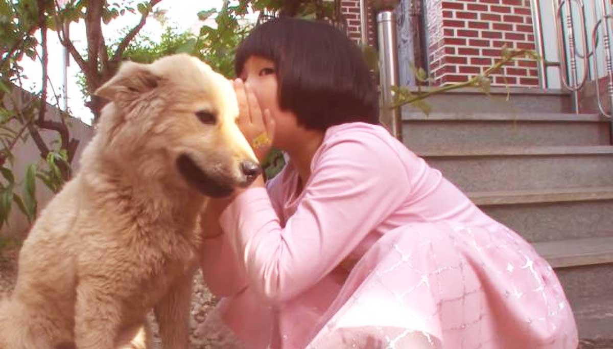 原创 父母讨厌流浪狗,女孩只能偷偷和它玩,当得知被收养后,狗狗笑了