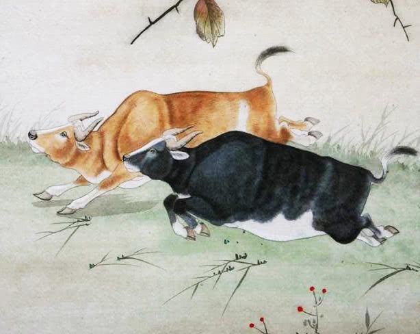 原创             爱情中,时常畏手畏脚,付出越多就越胆怯的三大生肖