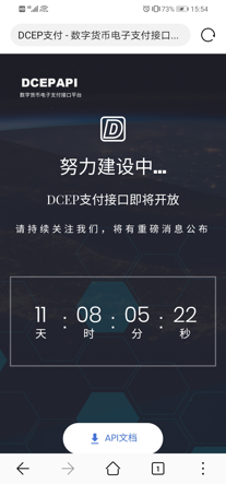 央行澄清:DCEPAPI网站非官方平台_程维妙