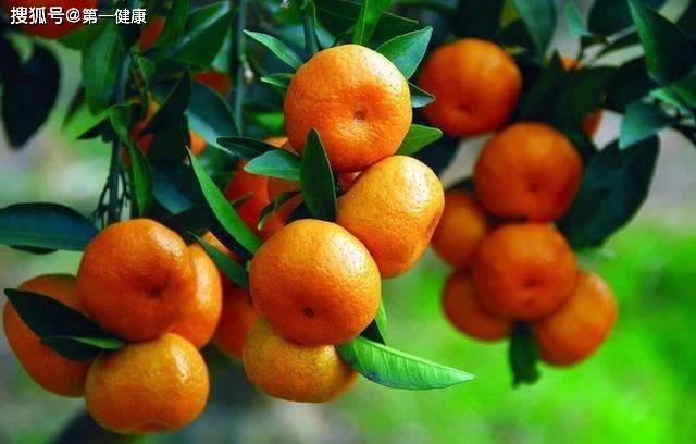 冬季每天吃上两个桔子,可能收获3个好处,但2类人最好少吃!