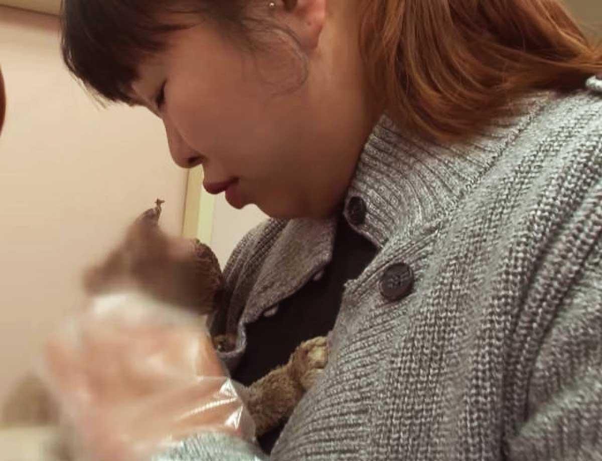 原创 流浪猫被人用大火烧伤,伤势非常严重,看清它的样子后,我哭了!