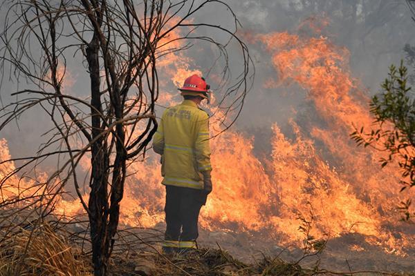 """澳大利亚东部发生""""史无前例""""林火,2人死亡多栋房屋被毁"""