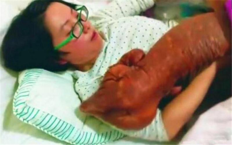 女子的奇葩爱好:每天与巨大宠物同吃同睡,晒出的照片吓坏网友
